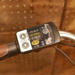🍂 電動自転車のスイッチはデリケート 🍂