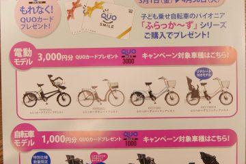 🌞 平成最後のふらっか~ずキャンペーン! QUOカードプレゼント! 🌞